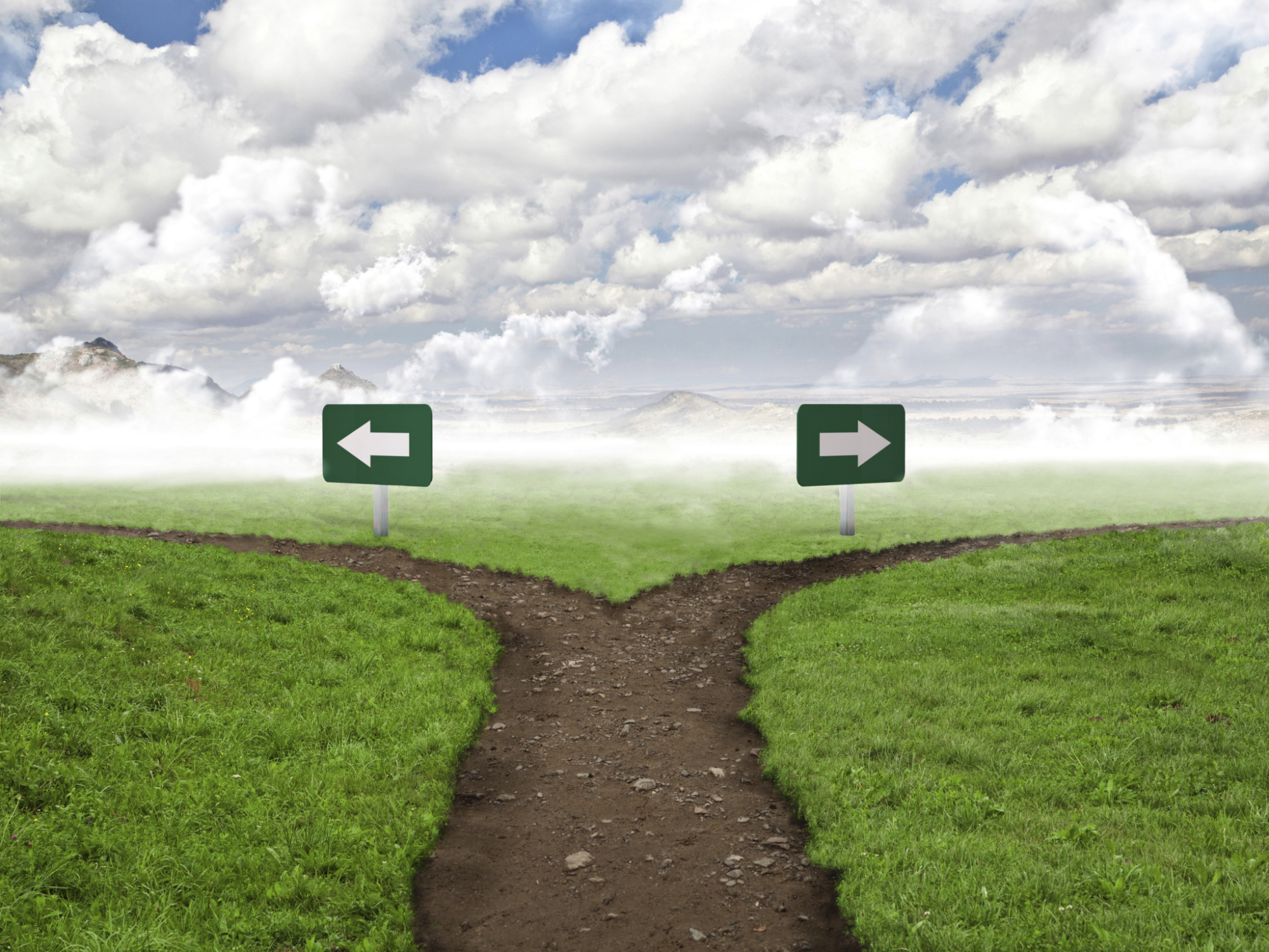 5 Stories of Split Paths - Riveted