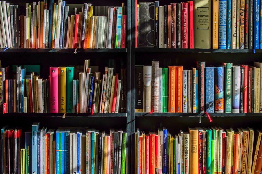 How Should You Organize Your Bookshelves Riveted,Checked Baggage United Cost
