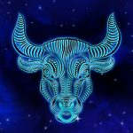 The Perfect Book Recommendations for Taurus!