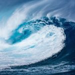 10 Books That Prove That the Ocean is a Scary Place